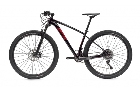 Bicicleta 29 carbono Evolution 9.2 2x11 XT 1